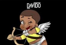 davido flora my flower instrumental