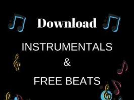 www.instrumentals.com.ng (Custom)