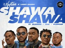dj neptune shawa shawa instrumental ft olamide, cdq, slimcase and larry