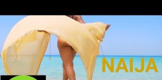 naija top dj mix 2018 dj perez july