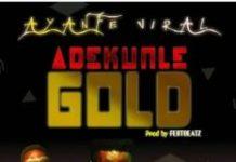 Adekunle Gold Ayanfe Viral Instrumental