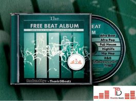 The Free Beat Album with hip hop, afro pop, afrobeat, dancehall, reggae
