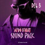 Del b Afrobeat Sound Pack