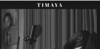 Timaya pull up instrumental chulo vibes album