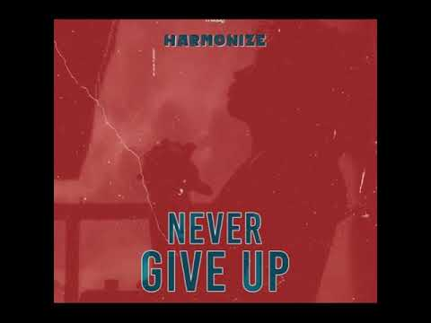Harmonize - Never Give Up Instrumental