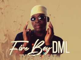 Fireboy Dml Jealous instrumental